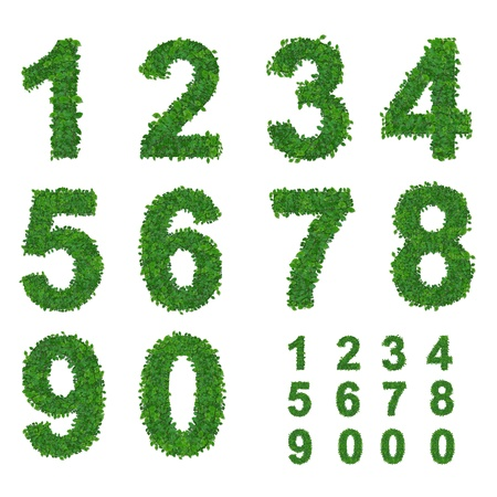 leaves number collection  photo
