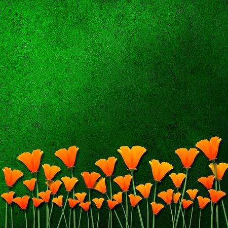 plantlife: orange flowers on green grass  Stock Photo