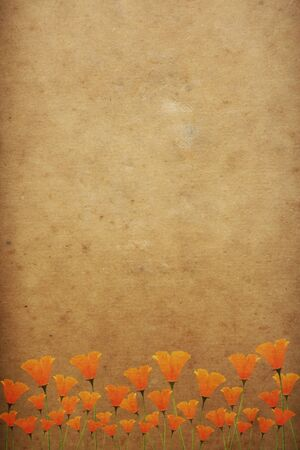 yellow notebook: old paper with flower pattern