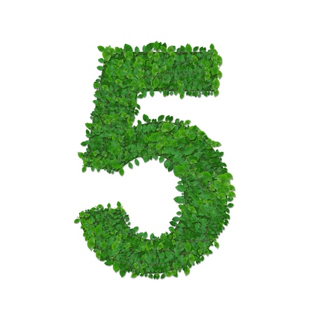 number 5: leaves number 5