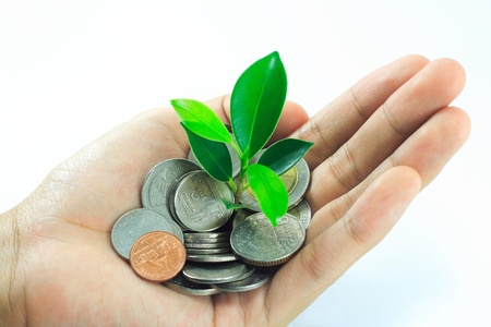 aspirations ideas: little plant growing from pile of coins on hand