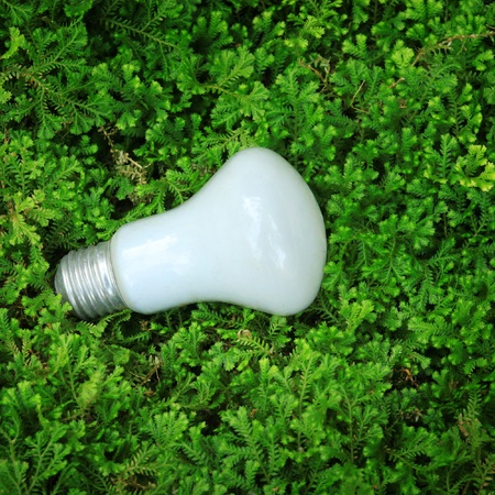 Lamp on grass photo