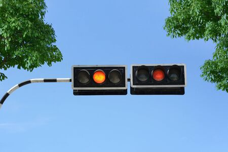Traffic signal with green leaves and blue sky photo