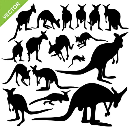 Kangaroo silhouettes collections Stock Vector - 15222010