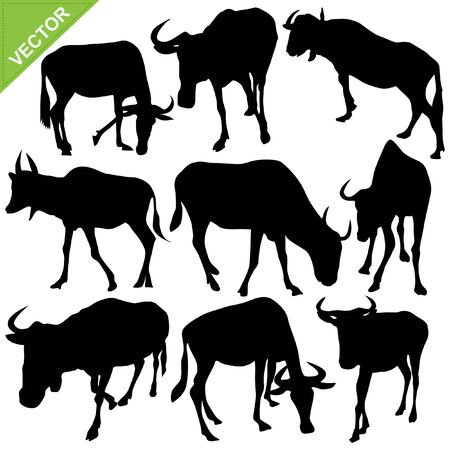 Bull silhouettes collections Stock Vector - 15221967