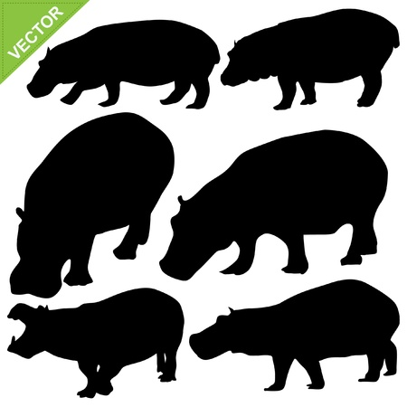 hippopotamus: Hippopotamus siluetas colecciones de vectores