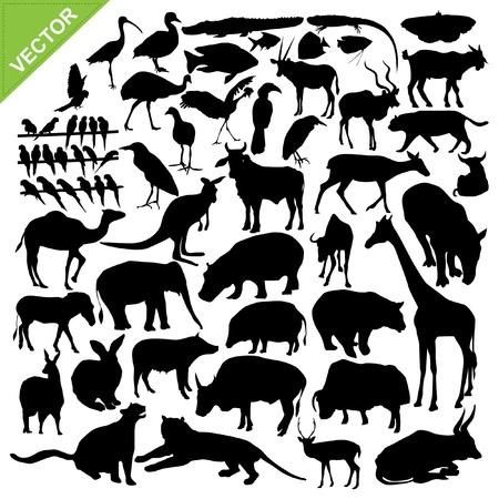 silueta tigre: Animales siluetas colecciones Vectores