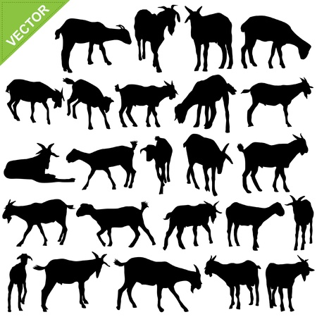 Goat silhouettes vector collections Stock Vector - 17372734