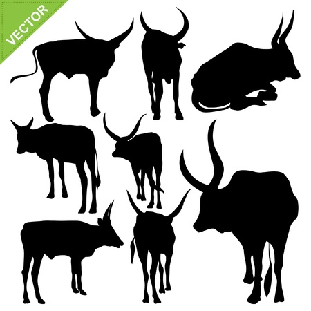 Bull silhouettes collections Stock Vector - 17372654