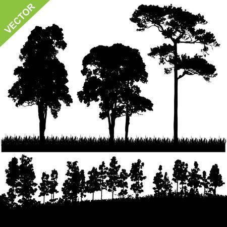 Set von Baum-und Wald Silhouette Vektor