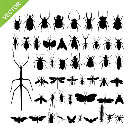 hormiga hoja: Siluetas de insectos vectores Vectores