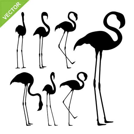 beautifu: Flamingo bird silhouettes vector
