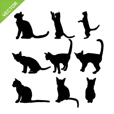 silueta de gato: Siluetas del gato vector Vectores