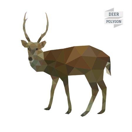 ungulate: Deer polygon  Illustration