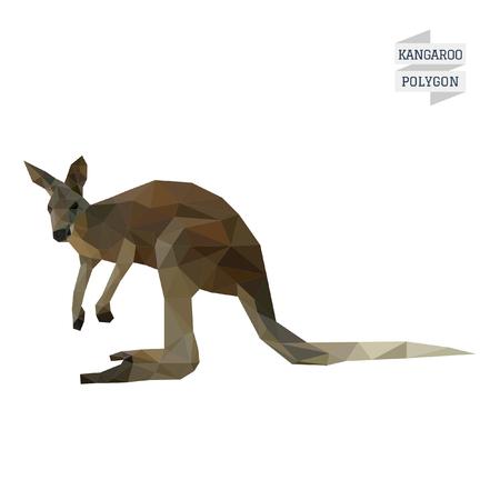 kangaroo mother: Kangaroo polygon  Illustration