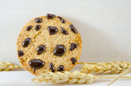 Fresh chocolate chip cookies and wheat on white background