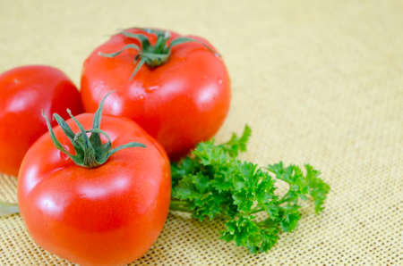 Raw tomatos on a covered table with fresh parsley
