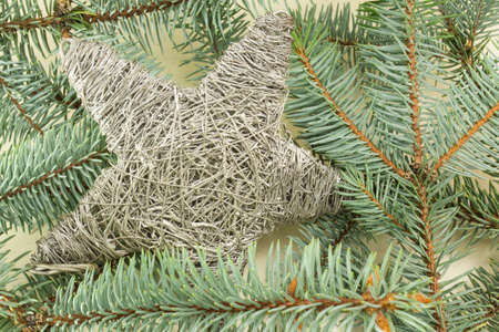 star shaped: Star shaped Christmas decoration on a fir Christmas tree branch