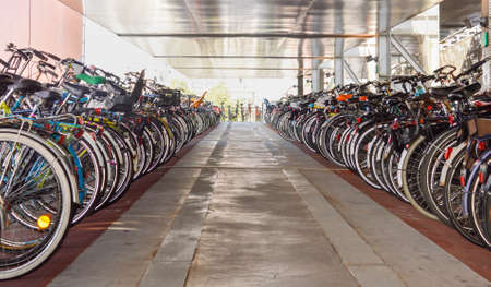 organized: Organized bicycle parking in Amsterdam city centre, Netherlands
