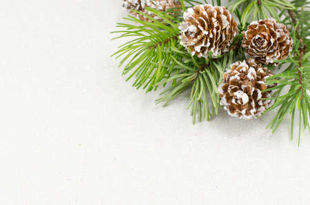 Festive Christmas ornaments and fir tree background