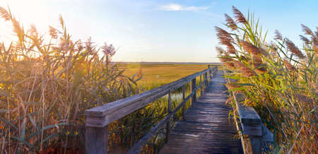 wooden bridge: wooden bridge leading into the lake with a beautiful sunset