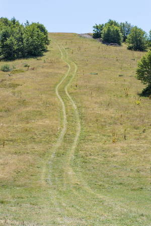 tire marks: steep hill with tire marks in the grass Stock Photo