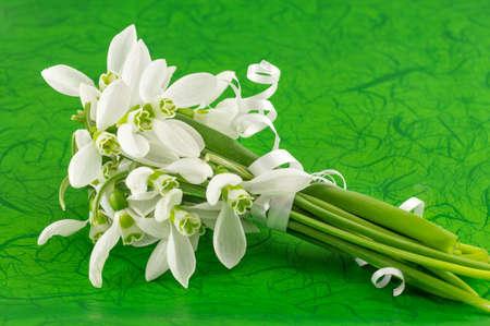 Fresh snowdrops bouquet on green background