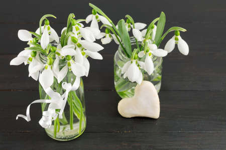 changing seasons: Fresh snowdrops bouquet on dark wooden table