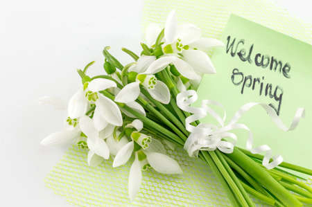 changing seasons: Fresh snowdrops bouquet with a note on white