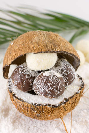 half ball: Fresh coconut and homemade coconut cookies on top of grounded coconut