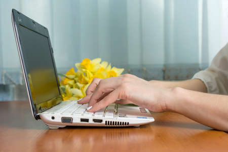 lap top: female hands typing at a lap top with daffodils in the background