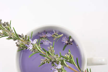 Colored rosemary tea with fresh rosemary flowers scattered