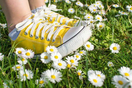 Yellow sneakers decorated with daisies in a dasiy field Stock Photo