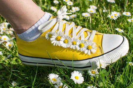 dasiy: Yellow sneakers decorated with daisies in a dasiy field Stock Photo