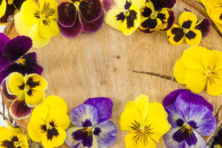 Violet flowers decoration on a wooden log Stock Photo