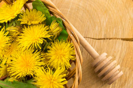 log basket: Yellow dandelions on a wooden background Stock Photo
