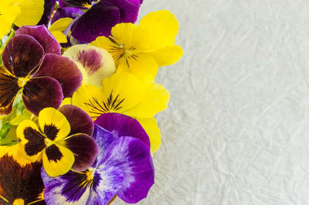 Yellow and violet flowers on white fabric