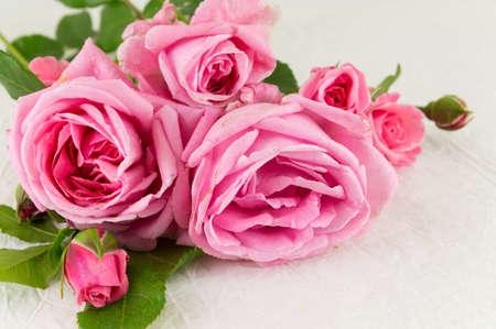 white silk: Pink roses bouquet on white silk textile