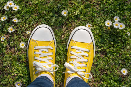 dasiy: Yellow sneakers in a dasiy field. First person view Stock Photo