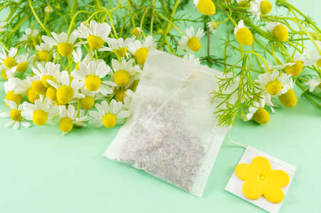 chamomile flower: Chamomile flowers close up on and a chamomile tea bag Stock Photo