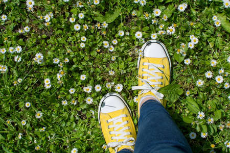 dasiy: Yellow sneakers in a dasiy field. First person point of view