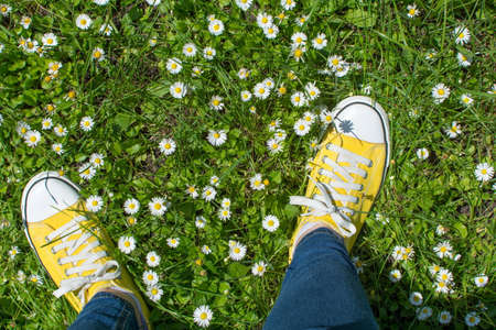 Yellow sneakers in a dasiy field. First person point of view