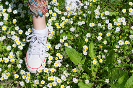 dasiy: White sneakers in a dasiy field. woman walking on grass Stock Photo