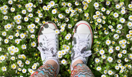 White sneakers in a dasiy field. woman walking on grass Stock Photo