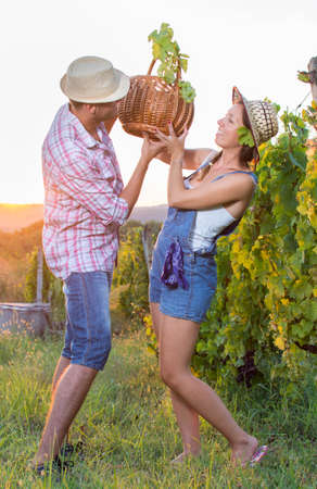 wine grower: Couple in grape picking at the vineyard holding a basket