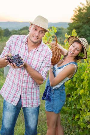 Couple at a vineyard holding a wicker basket. Grape picking Banco de Imagens