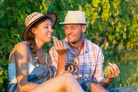 wine grower: Happy couple sharing fresh grapes in vineyard