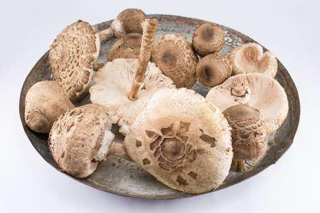 Raw parasol mushroom on old cooking pan Stok Fotoğraf