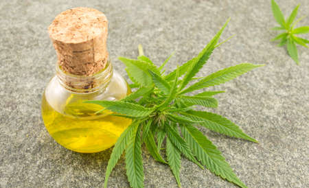 Marijuana leaf and cannabis oil on stome table Standard-Bild