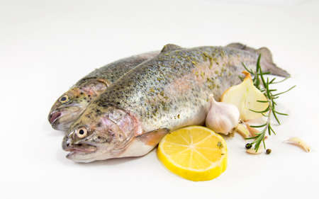 gutted: uncooked seasoned trout on white background with lemon and rosemary